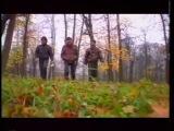 Юрий Шевчук - Что такое осень